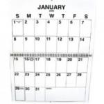 Ensight Skills Center Store: Large_Print_Wall_Calendar_2011